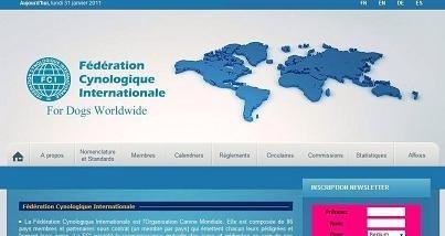 Организации/Organizations