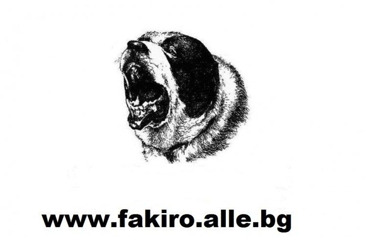 www.fakiro.alle.bg