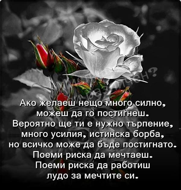 togeo.alle.bg  сайт на Тодор Георгиев