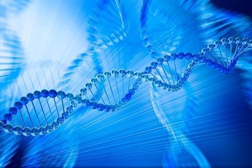 Как да говорите със своята ДНК